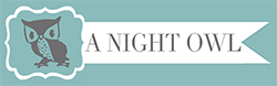 A Night Owl Logo